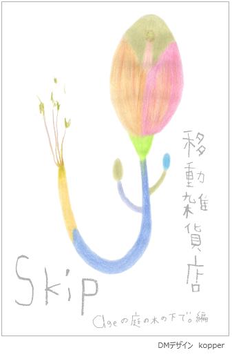 Skipdm490a